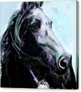 Horse Painted Black Canvas Print