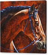 Horse Painting - Ziggy Canvas Print