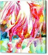 Horse Painting.22 Canvas Print