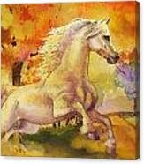 Horse Paintings 003 Canvas Print