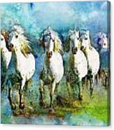 Horse Paintings 005 Canvas Print