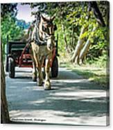 Horse Powered Mackinac Island Canvas Print