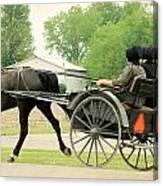 Horse Powered Transportation Canvas Print