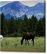 Horse Ranch Below The Peaks Canvas Print