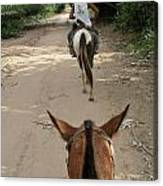 Horse Riding Canvas Print