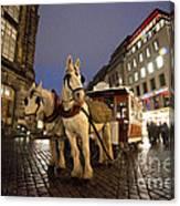 Horse Tram Canvas Print