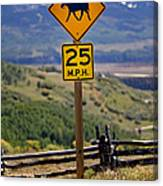 Horseback Riding Sign Canvas Print