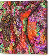 Horseman Cometh Canvas Print