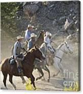 Horsemen Marching In Dust Canvas Print