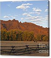 Horses In North Fork Canyon   #4106 Canvas Print