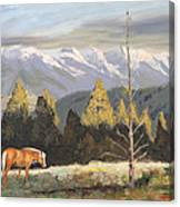 Horses Of The Tetons Canvas Print