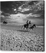 Horses On The Beach Bw Canvas Print