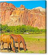 Horses On The Gifford Farm In Fruita In Capitol Reef National Park-utah Canvas Print