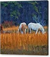 Horses On The March Canvas Print