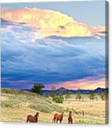Horses On The Storm 2 Canvas Print