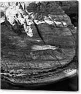 Horseshoe Bend - Arizona Canvas Print