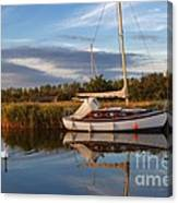 Horsey Mere In Evening Light Canvas Print