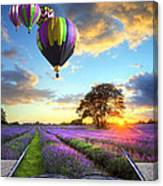 Hot Air Balloons And Lavender Book Canvas Print