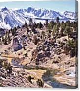 Hot Sierra Spring Canvas Print
