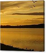 How Many Birds Can You Count? Canvas Print