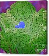 How Things Were Purple Green Blue Canvas Print