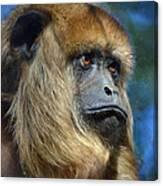 Howler Monkey Canvas Print
