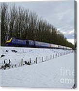 Hst In The Snow  Canvas Print