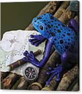 Huckleberry Frog II Canvas Print