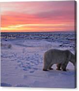 Hudson Bay Landscape Canvas Print