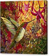 Hummer Dazzle Canvas Print