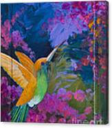 Hummers Paradise Canvas Print