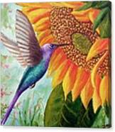 Humming For Nectar Canvas Print