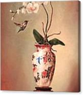 Hummingbird And White Orchid Canvas Print