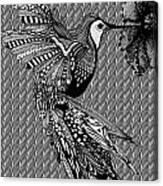 Hummingbird Flight 20 Canvas Print
