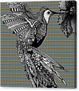 Hummingbird Flight 21 Canvas Print