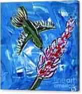Hummingbird II Canvas Print