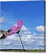 Hummingbird Panorama Canvas Print