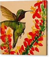 Hummingbird With Red Flowers Canvas Print