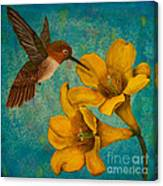 Hummingbird With Yellow Jasmine Canvas Print