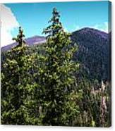 Humphreys Behind The Spruces  Canvas Print