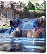 Hungry Hungry Hippo Canvas Print