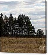 Hunter's Raised Blind In A Spring Field Canvas Print