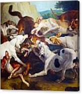 Hunting Dogs Detail Canvas Print