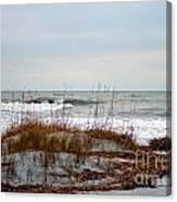 Hunting Island Beach Canvas Print