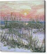 Hunting Island Sea Oats Canvas Print