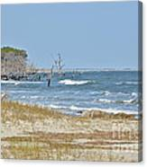 Hunting Island State Park Canvas Print