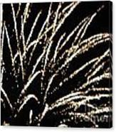 Huron Ohio Fireworks 9 Canvas Print