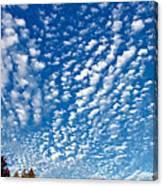 Huron Sky 4 Canvas Print