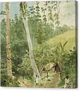 Hut In The Jungle Circa 1816 Canvas Print