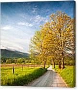 Hyatt Lane Cade's Cove Great Smoky Mountains National Park Canvas Print
